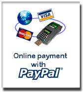 pay now logo